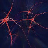 Nerve cells — Stock Photo