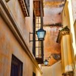Malaga Street — Stock Photo #20015163