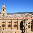 Stock Photo: Aerial view of Malaga cathedral