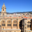 Aerial view of Malaga cathedral — Stock Photo