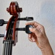 Hand playing stringed instrument — Photo