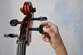 Hand playing stringed instrument — Stock Photo