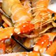 Fresh Crayfish — Foto Stock