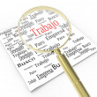Magnifying glass looking for work — Stock Photo #21043301