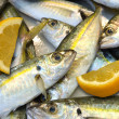 Foto Stock: Mackerel fish