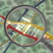 Dna with magnifying lens — Stock Photo