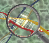 Dna with magnifying lens — Stok fotoğraf