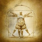 Anatomie der vitruvianische mensch — Stockfoto
