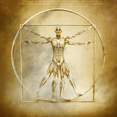 Anatomy of Vitruvian Man — Stock Photo