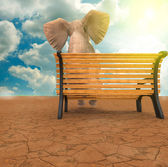 Elefante sentado — Foto de Stock