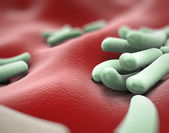 Bacteria Microscopic View — Stock Photo
