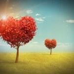 Heart shaped Trees — Stock Photo #39660667