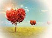 Heart shaped Trees — 图库照片