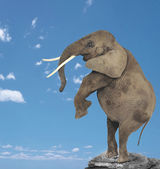 Elephant above a mountain — Stock Photo