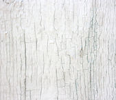White rustic wall. Weathered wood with white enamel. — Stock Photo