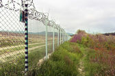 Fence with barbed wire. Concertina wire atop a fence protect in — Stock Photo