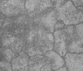 Grey concrete wall background. — Stock Photo