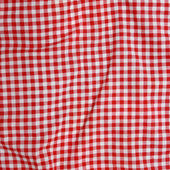 Red and white checkered picnic blanke — Stock Photo
