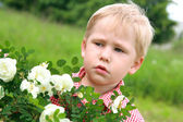 I have an allergy on flowers!!! — Stock Photo