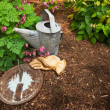 Sundial on Bark Mulch with Garden Gloves and Worn Watering Can — Stock Photo