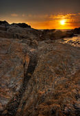 Sunset at Point Lobos — Stock Photo