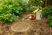 Tools on the Forest Path Set up and Ready to Garden — Stock Photo