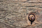 Boat Anchor Embedded in Rock — Stock Photo