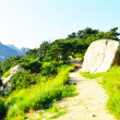 Geumjeongsanseong Forest Fortress, where there is a 18.8km long wall of rock which used as a defense, Busan, South Korea — Stock Photo