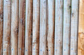Wooden Slatted Fence — Stock Photo