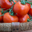 Foto Stock: Basket of Tomatoes (2)