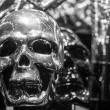 Black & White Silver Skull — Stock Photo