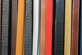 Fashion Belts (3) — Стоковое фото