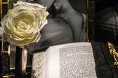 Powieść romantyczna — Zdjęcie stockowe