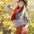 Attractive young girl posing in autumn park — Stock Photo #23529529