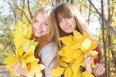 两个少女抱著一堆黄色枫叶 — 图库照片