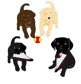 3 Black labs and one yellow lab — Stock Vector