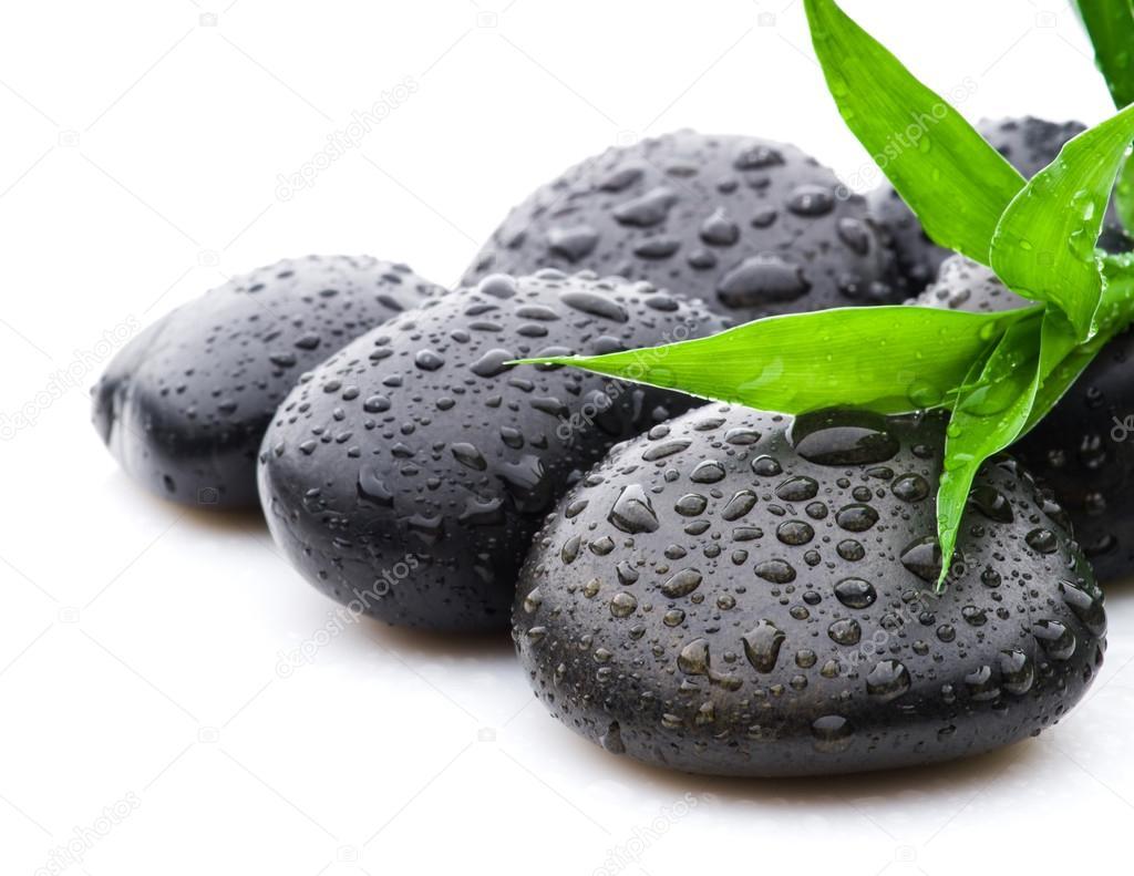 Hojas de bamb y piedra zen con gotas de agua foto de for Fotos piedras zen