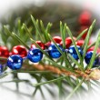 Beautiful christmas decoration — Foto Stock