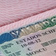 Stock Photo: Shot of few passport with Schengen visa