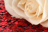 Valentines decoration of white rose and red heart — Stock Photo