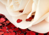 Valentines decoration of white rose and red heart — Foto Stock