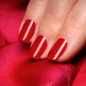 Beautiful female finger nails with red nail closeup on petals. Perfect manicure — Stock Photo
