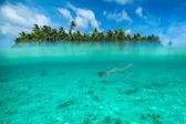 Mulher de mergulho em uma lagoa tropical — Foto Stock