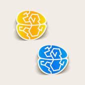 Realistic design element: brain — Stock Vector