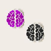 Realistický grafický prvek: mozek — Stock vektor