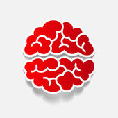 Realistic design element: brain — Stock Vector