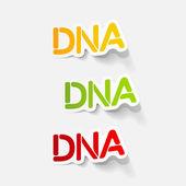 Realistic design element: DNA — Stock Vector