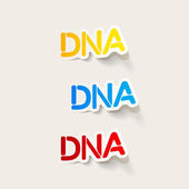 Realistic design element: DNA — Stock Vector