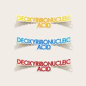 Realistic design element: Deoxyribonucleic acid — Stock Vector