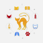 Veterinary icons — Vetorial Stock